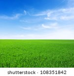 field of green grass and sky | Shutterstock . vector #108351842