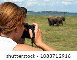 caucasian woman making photo of ... | Shutterstock . vector #1083712916