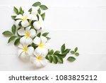 white flower frangipani scents...   Shutterstock . vector #1083825212