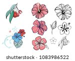 tropical flowers and berries ...   Shutterstock .eps vector #1083986522