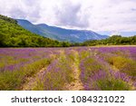 lavender field near the mont... | Shutterstock . vector #1084321022