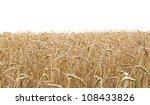 closeup view of a wheat field...   Shutterstock . vector #108433826