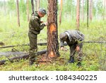 forestry inspector with a group ... | Shutterstock . vector #1084340225