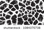 Black White Animal Skin Textur...