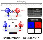 electronegativity infographic... | Shutterstock .eps vector #1084385915