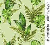 tropical sketch beautiful...   Shutterstock . vector #1084467608