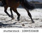 horse legs during a dinamic... | Shutterstock . vector #1084533608