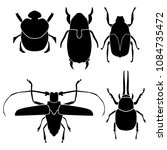 vector beetle silhouettes ... | Shutterstock .eps vector #1084735472