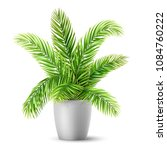 palm tree leaves in a pot. a... | Shutterstock .eps vector #1084760222