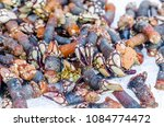 goose barnacles at a seafood... | Shutterstock . vector #1084774472