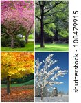 four seasons collage  spring ... | Shutterstock . vector #108479915