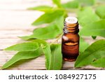 eucalyptus essential oil and... | Shutterstock . vector #1084927175