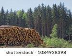 woodpile of freshly harvested...   Shutterstock . vector #1084938398