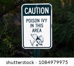 poison ivy sign | Shutterstock . vector #1084979975