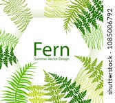 fern frond tropical leaves... | Shutterstock .eps vector #1085006792