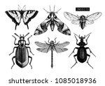 vector collection of hand drawn ... | Shutterstock .eps vector #1085018936