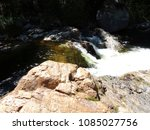 Creek With Green Wild Water An...