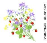 bunch of bellflowers ... | Shutterstock .eps vector #1085044325