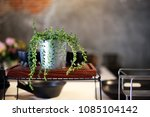 plant bucket on wood plate... | Shutterstock . vector #1085104142