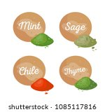 mint and sage  chile rosemary... | Shutterstock .eps vector #1085117816