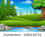 forest scene with many trees... | Shutterstock .eps vector #1085134712
