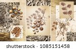 collection of designer oil... | Shutterstock . vector #1085151458