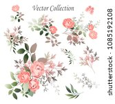 vector.  botanical illustration.... | Shutterstock .eps vector #1085192108