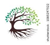 Green Eco Tree Vector Icon  Bio ...