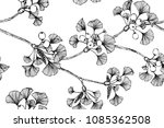 seamless flower pattern... | Shutterstock .eps vector #1085362508