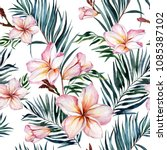 pink plumeria flowers and... | Shutterstock . vector #1085387102