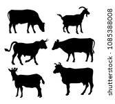 vector silhouettes of pets. a... | Shutterstock .eps vector #1085388008