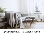 stylish interior of living room ... | Shutterstock . vector #1085547245
