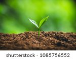 plant seeds planting trees... | Shutterstock . vector #1085756552
