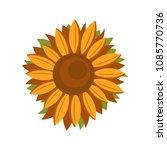 tall sunflower icon. flat... | Shutterstock .eps vector #1085770736