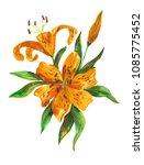 orange lily. watercolor... | Shutterstock . vector #1085775452