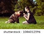 young woman training puppy of... | Shutterstock . vector #1086012596