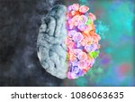human brain illustration on top ... | Shutterstock . vector #1086063635