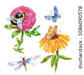watercolor bumblebee  dragonfly ... | Shutterstock . vector #1086090578