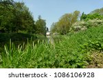 grass by a riverbank during the ... | Shutterstock . vector #1086106928