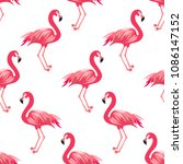 tropical seamless pattern with... | Shutterstock .eps vector #1086147152