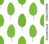 vector healthy green spinach... | Shutterstock .eps vector #1086153008