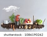 Fruits And Vegetables Growing...