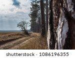 outdoor park forest | Shutterstock . vector #1086196355