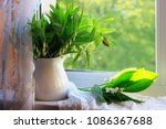 still life with a bouquet of... | Shutterstock . vector #1086367688