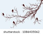 silhouettes of the sparrows on... | Shutterstock .eps vector #1086435062