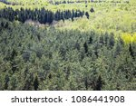 beautiful spring mixed spruce... | Shutterstock . vector #1086441908