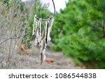 dream catcher outside in sun | Shutterstock . vector #1086544838