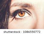 Eye Makeup. Beautiful Eyes Mak...