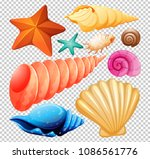 a set of seashell for beach... | Shutterstock .eps vector #1086561776