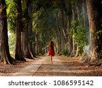 mahogany cave in purworejo | Shutterstock . vector #1086595142